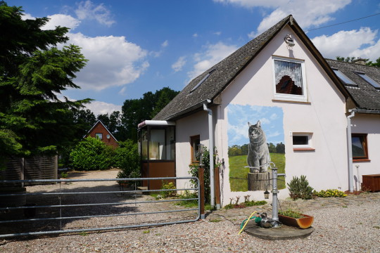 Katzenpension Schönwalde, Villa Mieze Mau, Katzenpension