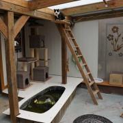 Abenteuerspielplatz für Katzen