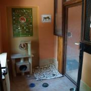 Ein separater Raum der Villa Mieze-Mau